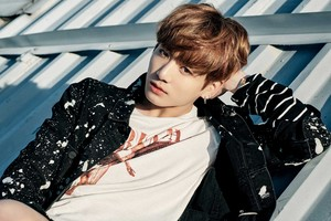 "BTS In New Concept Photos For ""You Never Walk Alone"""