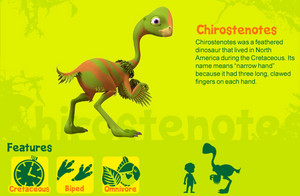 Chirostenotes
