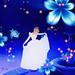 Cinderella icon - cinderella icon