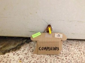 Complaints Booth
