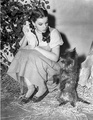 Dorothy and Toto - toto-the-wizard-of-oz photo