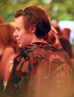 Harry Styles at his 23rd birthday party