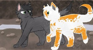 Hollyleaf and Fallen leaves