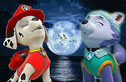 PAW Patrol Wallpaper Entitled Marshall And Everest