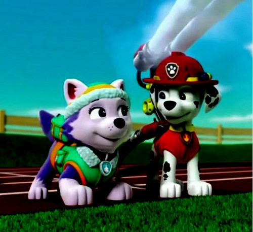 PAW Patrol Images Marshall And Everest Wallpaper And