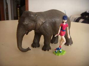 Musa e l'elefante