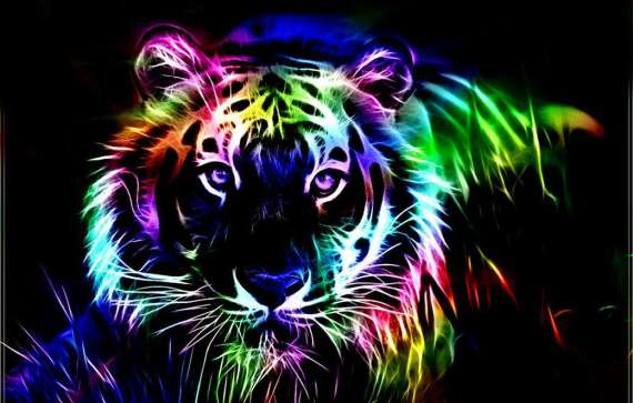 Bright Colors Images Neon Big Cat Wallpaper And Background Photos