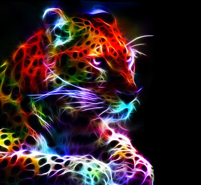 Bright Colors Images Neon Big Cats Wallpaper And Background Photos