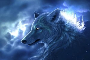 wolves images neon wolf wallpaper and background photos 40219213