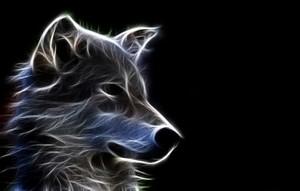 Neon بھیڑیا