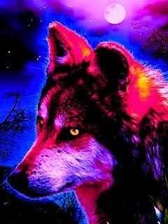 lobos imagens neon lobo wallpaper and background fotografias 40219215