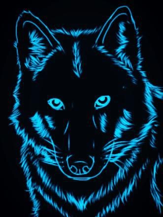 Blue Wallpaper Neon Wolf