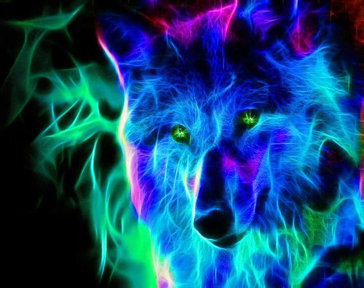 wolves images neon wolf hd wallpaper and background photos 40219222