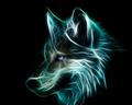 Neon serigala