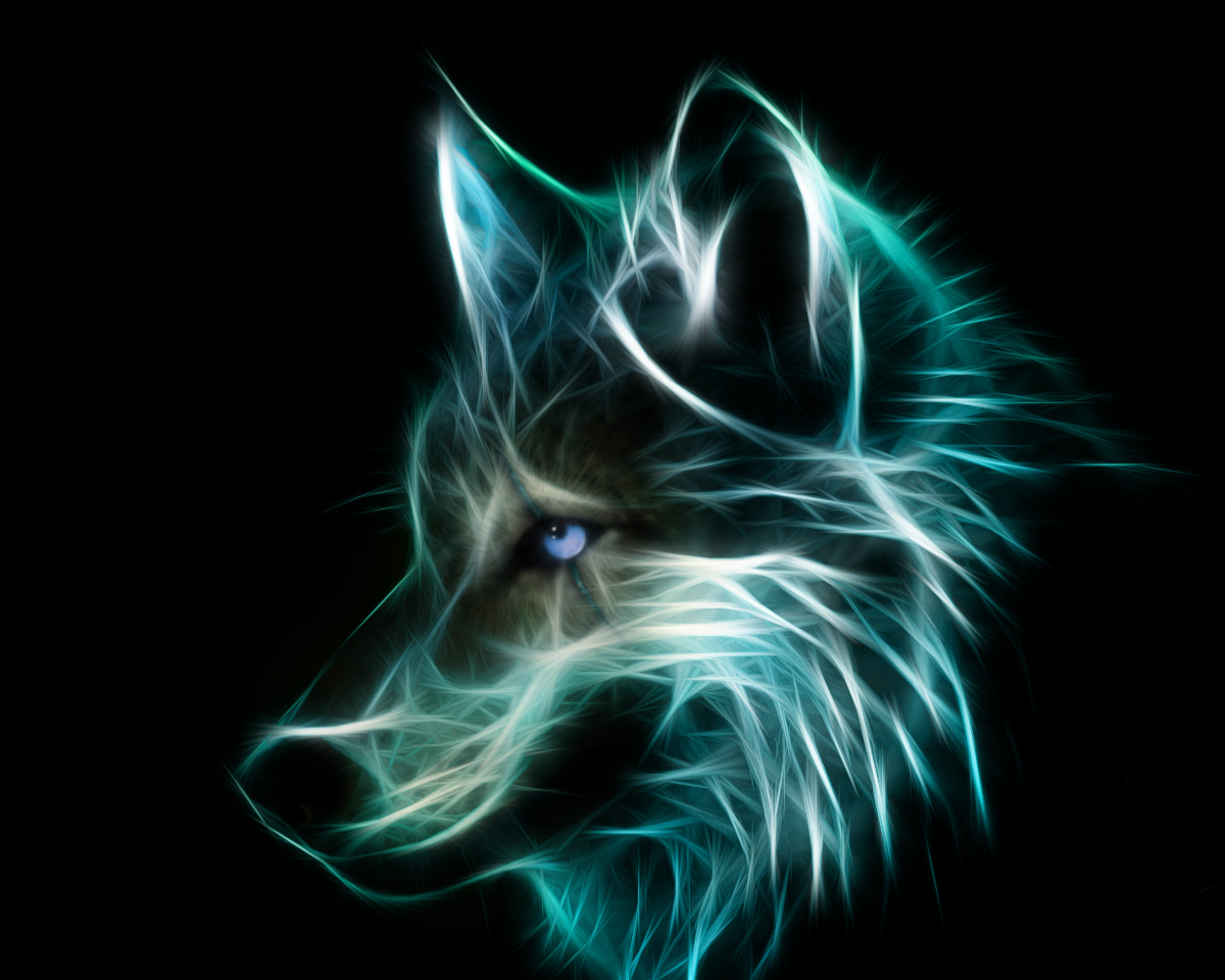 wolves images neon wolf hd wallpaper and background photos 40219247