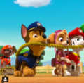 Paw Patrol  - paw-patrol photo