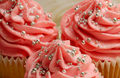 Pink Cupcakes - pink-color photo