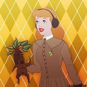 Princess cinderella in Hufflepuff House