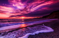 Purple Sunsets