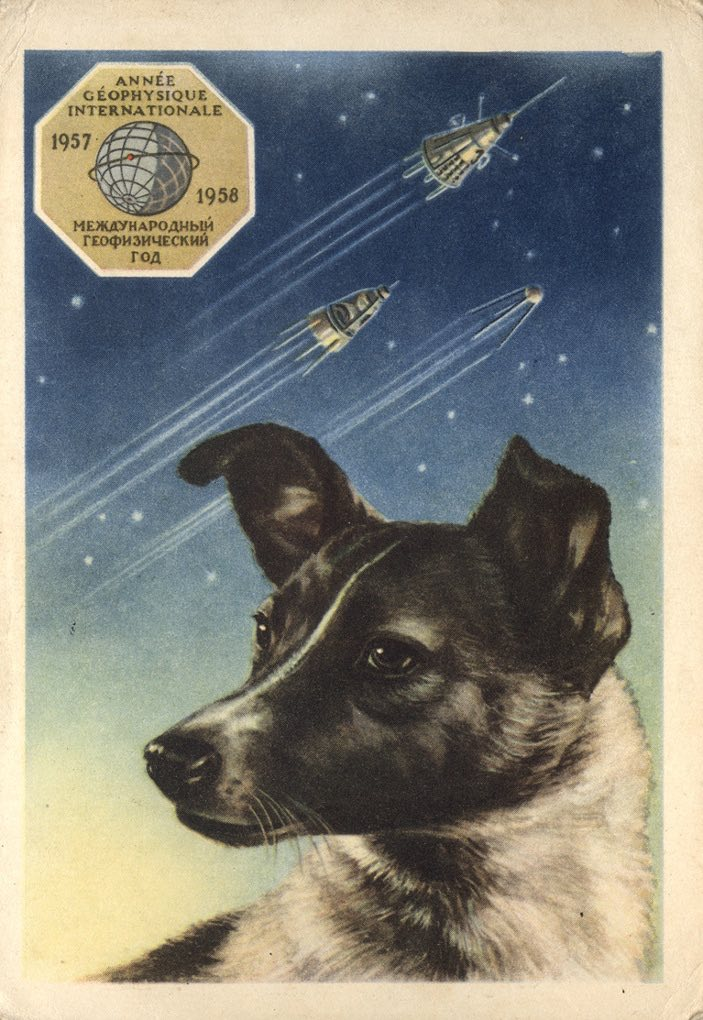 Soviet Space Dogs: Laika