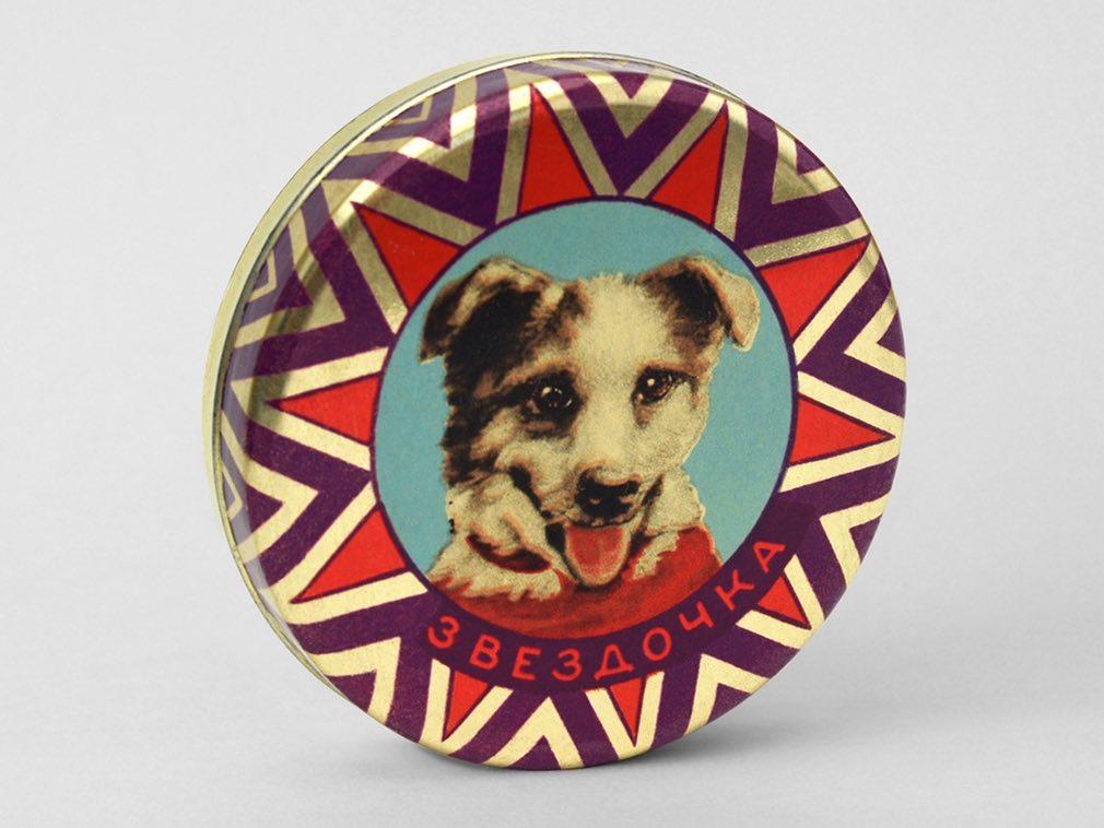 Soviet Space Dogs: Zvezdochka