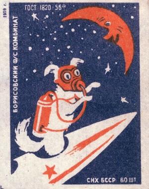 Soviet 太空 狗