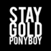 Stay Gold - the-outsiders icon