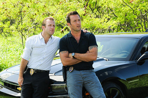 Hawaii Five-0 (2010) wallpaper titled Steve McGarrett and Danny