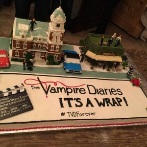 The Vampire Diaries series finale wrap up party