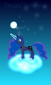 The night - my-little-pony-friendship-is-magic photo