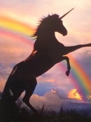 Unicorn and радуга