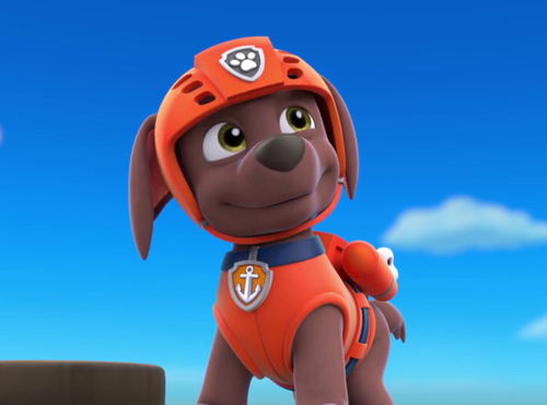 PAW Patrol Wallpaper Called Zuma