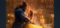 beauty and the beast - beauty-and-the-beast photo