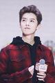 lu han - exo photo