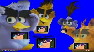 1 Birds Team.JPG