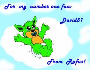 1382559105.david31 baby rufus