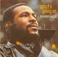 1971 Motown Release, What's Going On - marvin-gaye photo