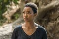 7x14 ~ The Other Side ~ Sasha - the-walking-dead photo