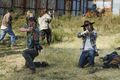 7x16 ~ The First Day of the Rest of Your Lives ~ Carl and Rick - the-walking-dead photo
