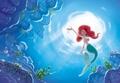 Ariel ~ ♥ - disney-princess photo
