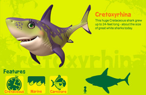 Cretoxyrhina