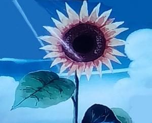 डोरेमोन फूल
