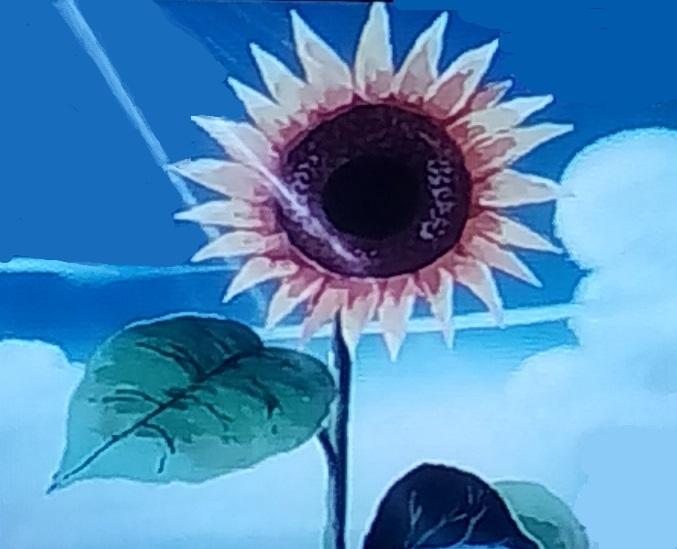 Doraemon flower