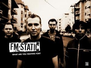 FM Static group