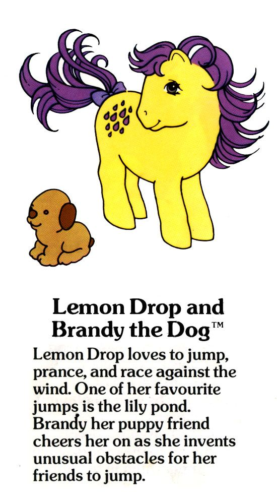 Lemon Drop and Brandy the Dog Fact File