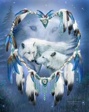 hati, tengah-tengah Of A serigala, wolf 3 sejak Carol Cavalaris