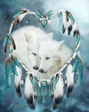 hati, tengah-tengah Of A serigala, wolf sejak Carol Cavalaris