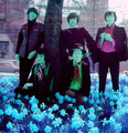Hollies 68 2 psycheblue - the-hollies photo