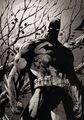 In Darkest Day  In Darkest Night - batman photo