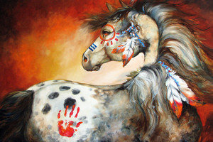 Indian War kuda, kuda kecil 4 feathers sejak Marcia Baldwin